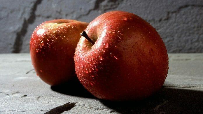 les pommes sont aussi des fruits du printemps