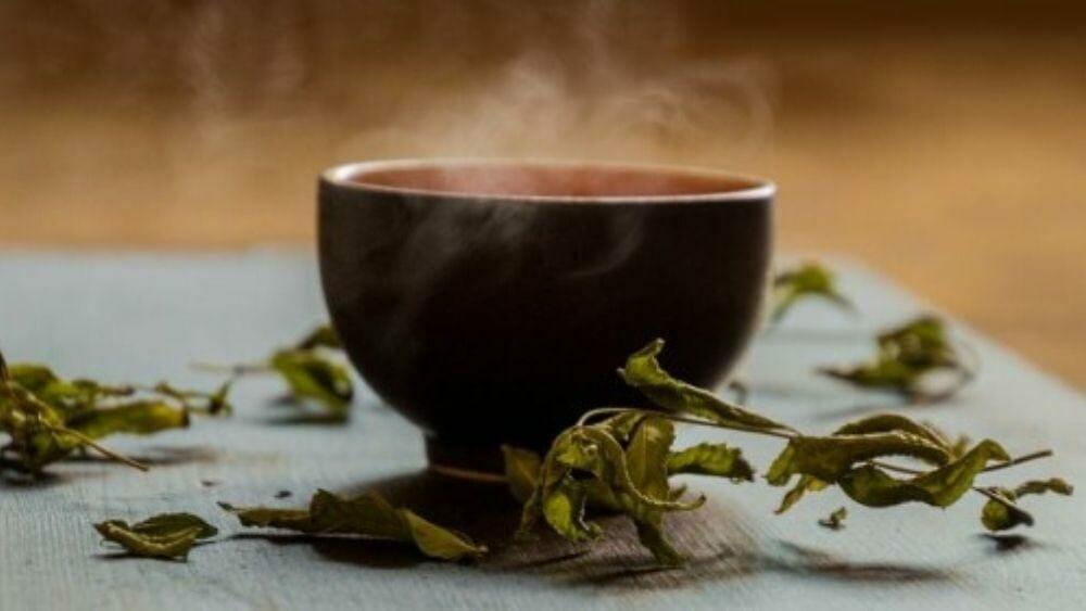 bienfaits du thé vert pour mincir