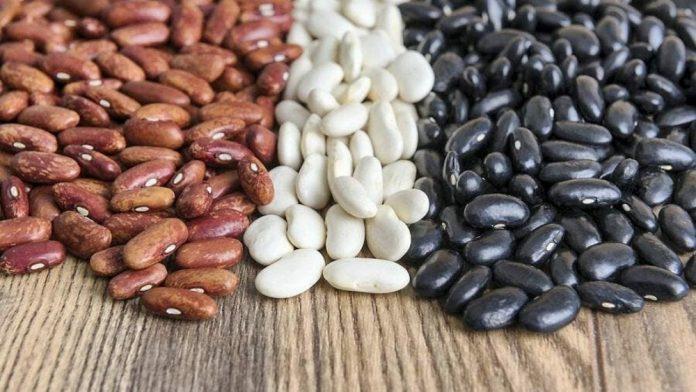 haricot : liste des légumes secs