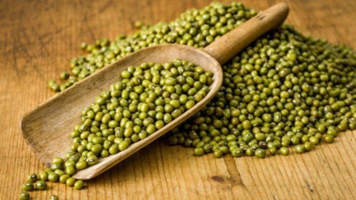 haricot mungo : liste des légumes secs
