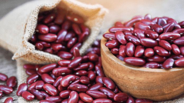 haricot azuki : liste des légumes secs