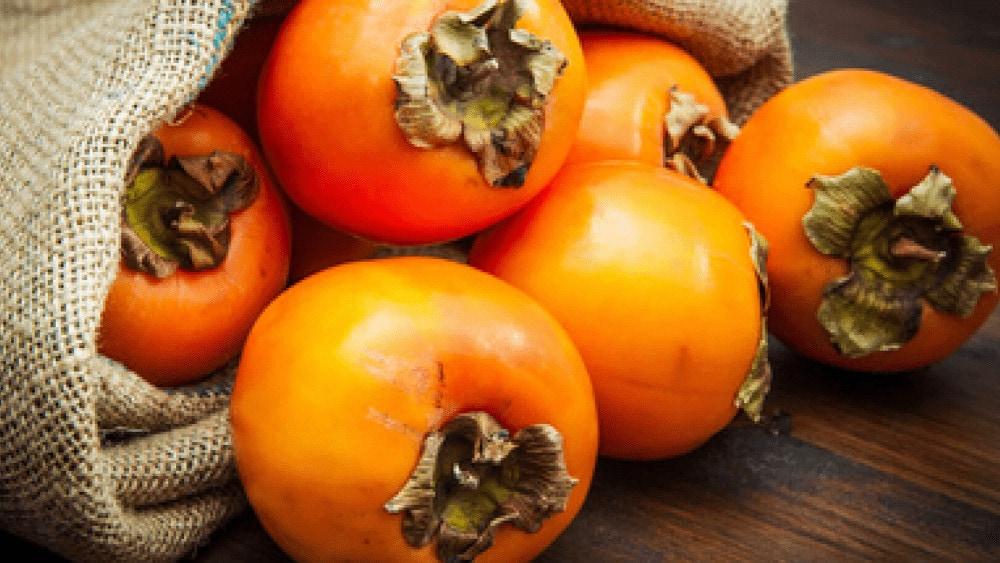 plaquemine fruit