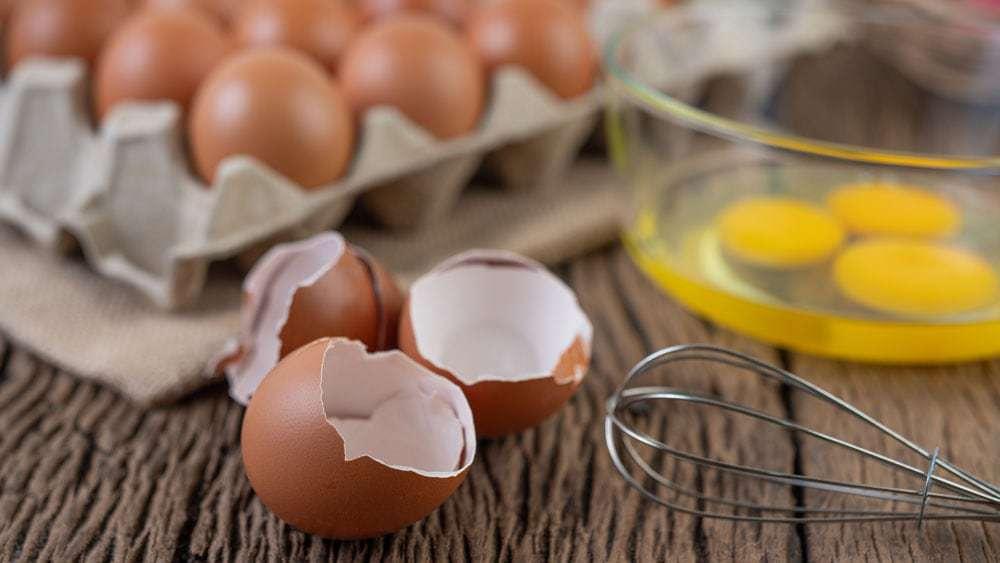 aliments protéines belle peau
