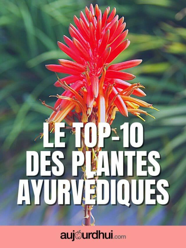 Top 10 des plantes ayurvédiques