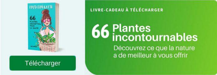 Phytothérapie - 66 plantes essentielles