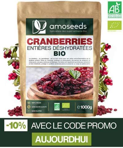 bienfaits de la cranberry